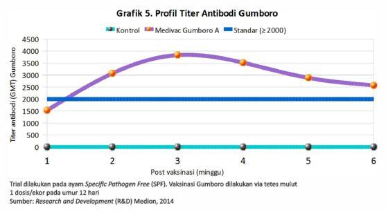Tetap Waspada Virus Gumboro