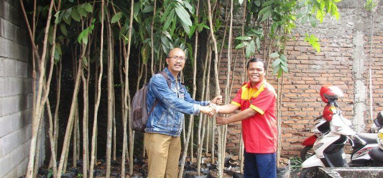 3. Bantuan Bibit Pohon Bandung 6 Oktober 2016